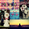 Mexiko Logbuch leni blogger lebemintgrün
